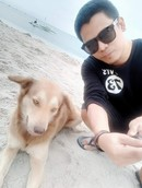 Аватар: TaruPong