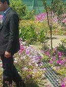 Аватар: SamAdam12345